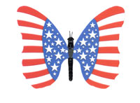 "The image ""http://www.african-butterfly-home-decorating.com/images/06336-american-flag.jpg"" cannot be displayed, because it contains errors."